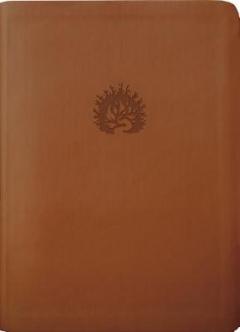 Reformation Study Bible - ESV
